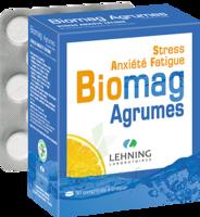 Lehning Biomag Comprimés à Croquer Agrumes B/90 à Forbach
