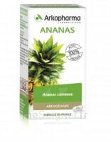 Arkogélules Ananas Gélules Fl/45 à Forbach