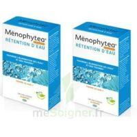 menophytea silhouette rétention d'eau à Forbach