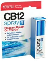 Cb 12 Spray Haleine Fraîche 15ml à Forbach