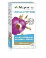 ARKOGELULES HARPAGOPHYTON, 45 gélules à Forbach