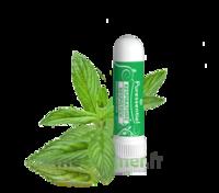Puressentiel Respiratoire Inhaleur Respiratoire Aux 19 Huiles Essentielles - 1 Ml à Forbach