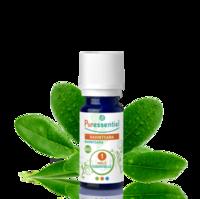 Puressentiel Huiles essentielles - HEBBD Ravintsara BIO* - 5 ml à Forbach