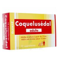 Coquelusedal Adultes, Suppositoire à Forbach