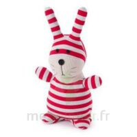 Soframar Bouillotte peluche micro-ondable Lapin Socky Dolls à Forbach