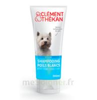 Clément Thékan Shampooing Poils Blancs T/200ml à Forbach