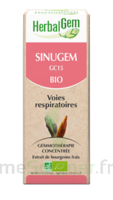 Herbalgem Sinugem Solution Buvable Bio Spray/15ml à Forbach