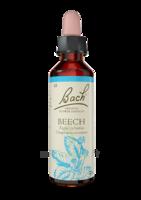 Fleurs De Bach® Original Beech - 20 Ml à Forbach