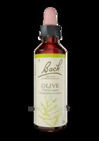 Fleurs De Bach® Original Olive - 20 Ml à Forbach